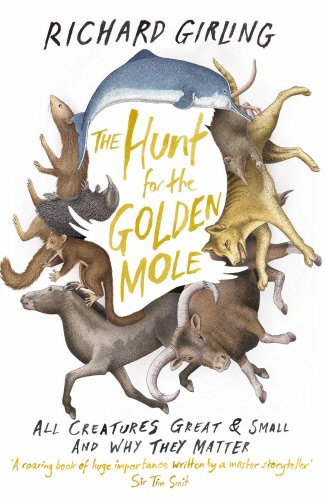 the-hunt-for-the-golden-mole-all-creatures-great-and-small-and-why-they-matter