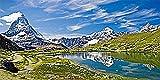 Tomco Stone picture Motiv Berglandschafdt14x28cm + Vogeltränke GRATIS