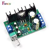 #2: Lepakshi Tda2050 Mono Audio Power Amplifier Board Module Dc 12-24V 5W-120W 1-Cha