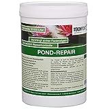 1 Kg Pond-Repair gegen Fadenalgen im Teich