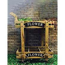 LIQICAI Flores Escaleras Pastoral rural de 2 niveles Carros de madera Flor Potella Asamblea de estante