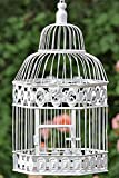 Decorative Bird Cage Height 48 cm Old-Fashioned Colonial Style