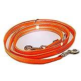 Activity4Dogs Hundeleine reflektierend Signal-orange 3-Fach verstellbar für größere und große Hunde, Made IN Germany