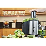 Andrew James Professional Whole Fruit Power Juicer 990 Watts, Includes 2 Year Warranty, Juice Jug And Cleaning Brush
