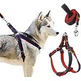 Triumilynn Dog Leash Harness Set, Heavy Duty Dog Cat Harness Leash For Small Medium Large Breed, No Choke And Comfort, Denim Adjustable Cat Leash Harness For Walking Training(2. 5Cm Red)