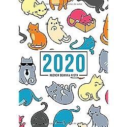 Agenda semana vista 2020: Del 1 de enero de 2020 al 31 de diciembre de 2020: Diario, organizador y planificador con vista semanal y mensual español: Gatos lindos 934-8