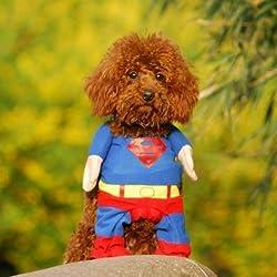 Alfie mascota por petoga Couture–Disfraz de superhéroe Superman–tamaño: S