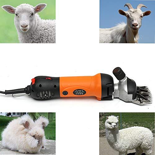 lle Elektrische Wollschere Tragbare 6 Gang Geschwindigkeit für Schafe, Ziegen, Rinder Und Andere Nutztiere Haustier Rasieren Elektrische Schafe Schermaschine Gürtel Box (Orange) ()