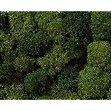 Sacchetto lichene Verde misto XL 75 gr