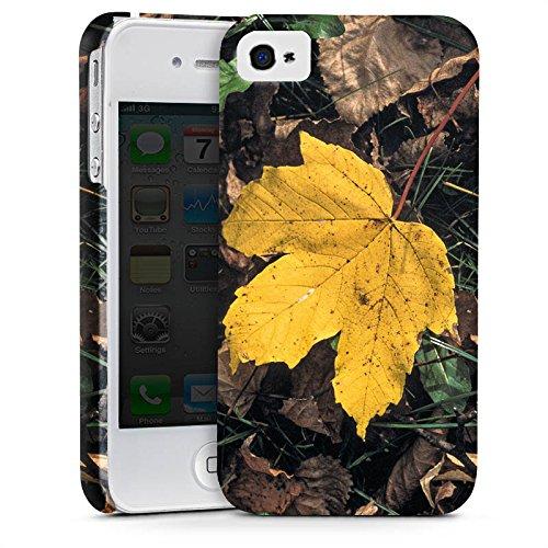 Apple iPhone X Silikon Hülle Case Schutzhülle Ahornblatt Laub Herbst Premium Case glänzend