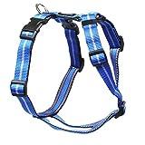 Feltmann Mopsgeschirr Hundegeschirr Soft Nylon, blau Streifen, 7-13 kg, 20 mm