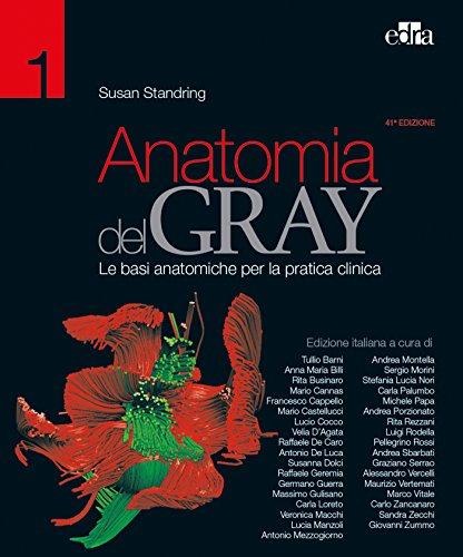 Anatomia del Gray. Le basi anatomiche per la pratica clinica (2 Volumi)