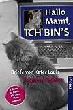 Hallo Mami, ich bin's: Briefe von Kater Louis - Susanne Feddern