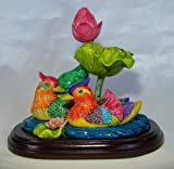 Mandarin canards–Symbole de Bonheur