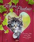 KatzenPhantasie 2020: Großer Wandkalender. Foto-Kunstkalender - Katzenkalender mit literarischen Zitaten. 55 x 45,5 cm