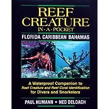 Reef Creature in-a-pocket Florida, Caribbean, Bahamas by Paul Humann (2000-01-01)