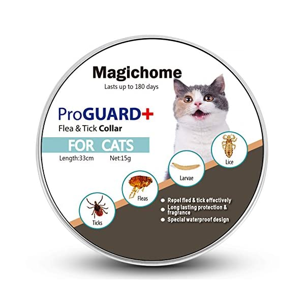 Magichome Flea and Tick Collar for Dogs, Adjustable Length Waterproof Dog Anti Flea Collar 1
