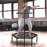 ISE Fitness Trampolin,Trampolin für Jumping Fitness Ø 122 cm höhenverstellbarer Haltegriff(113.5-134.5cm),leise Gummiseilfederung,Nutzergewicht bis 120kg,TÜV-Geprüft (Orange)