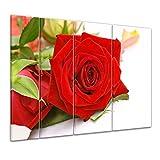 "Bilderdepot24 Keilrahmenbild ""Rose"" - 180x120 cm 4 teilig - fertig gerahmt, direkt vom Hersteller"