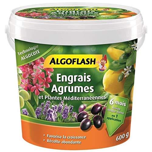 ALGOFLASH Engrais Algocote Agrumes et plantes méditerranéennes, Action jusqu'à 6 mois, 600 g, ABAGRU600