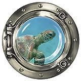 """Wandkings Wandsticker Bullauge """"Unterwasserwelt - Baby Schildkröte unter Wasser"""" - 30 x 30 cm SILBER"""