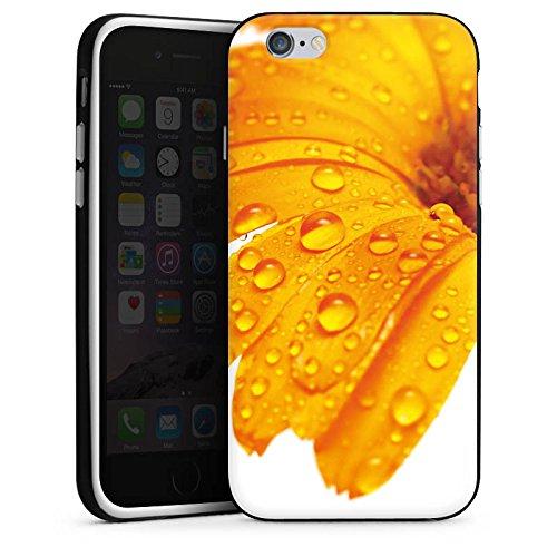 Apple iPhone X Silikon Hülle Case Schutzhülle Blume Tropfen Orange Silikon Case schwarz / weiß