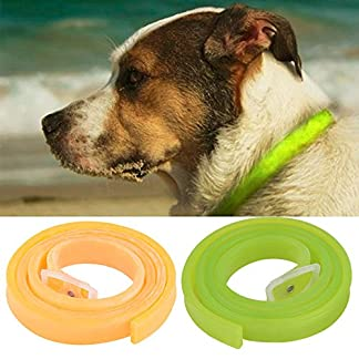 herbal repellent flea collar for dog large and medium,dog product for ticks and fleas prevention,adjustable,long lasting,waterproof,nice smell (green) Herbal Repellent Flea Collar for Dog Large and Medium,Dog Product for Ticks and Fleas Prevention,Adjustable,Long Lasting,Waterproof,Nice Smell (Green) 51FCWmQPZ2L