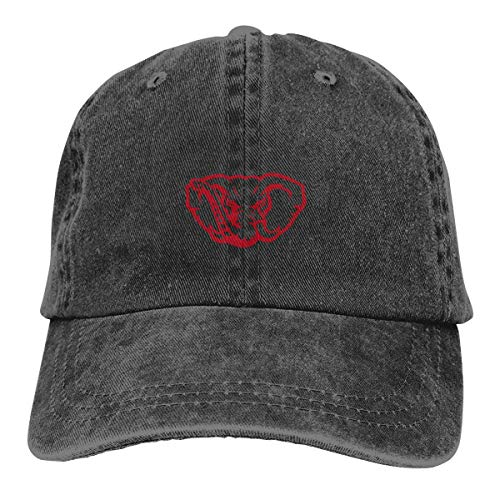 lephant Cowboy Hat Vintage Chic Denim Baseball Caps Trucker Hats ()