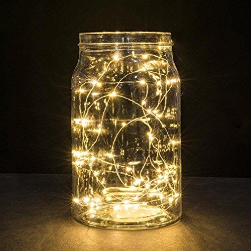 Hunpta 2M 20LED Schaltfläche Zelle angetriebene Silber Kupferdraht Mini Fairy Lights eine Zeichenfolge (Warm White) -