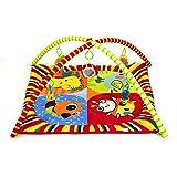 Kinderkraft Krabbeldecke Spieldecke Spielbogen Erlebnisdecke Spielmatte Babydecke Decke Rot