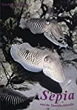 Image de Sepia und die Tintenfischfamilie