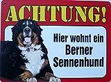 Schild 14x19cm - Hier wohnt ein Berner Sennenhund Hund Haus Alu Coupon dipond