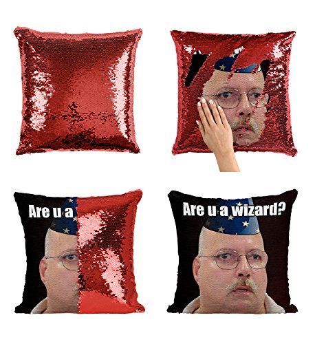Hollywood-hipster (Are U A Wizard Meme P26 Sequin Pillow, Sequin Pillowcase, Two Color Pillow, Fift for her, Gift for him, Magic Pillow, Mermaid Pillow, Pillow + Insert)