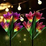 Tagvo Extérieur Lampes Solaires de Jardin en Forme de - Lvyleaf Lot de 2 Appliques...