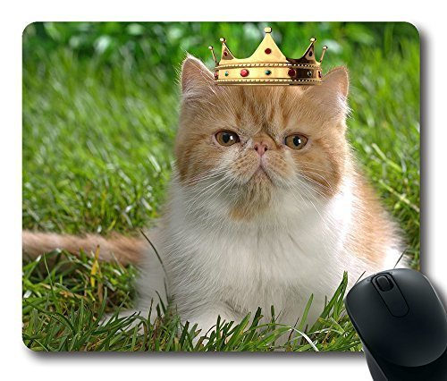 cat-in-crown-masterpiece-limited-design-oblong-mouse-pad-by-cases-mousepads