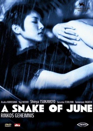 Bild von A Snake of June - Rinkos Geheimnis