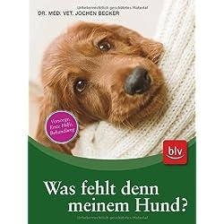 Was fehlt denn meinem Hund?: Was kann ich selbst tun und wann muss ich zum Tierarzt?