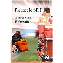 Pierrot le SDF (Roman)