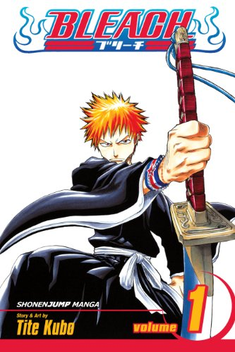 Bleach, Vol. 1: Strawberry and the Soul Reapers (English Edition)