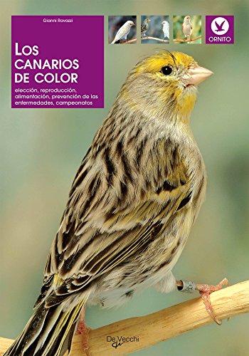 Los canarios de color (Spanish Edition)