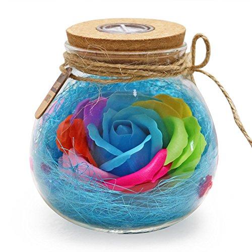 Nrpfell Wishing Flasche LED Romantische Birne RGB Dimmer Lampe Rose Blume Flasche Licht mit Fernbedienung Nachtlicht fuer Mama Lady Girl Weihnachten Geburtstagsgeschenk blau Lady-flasche
