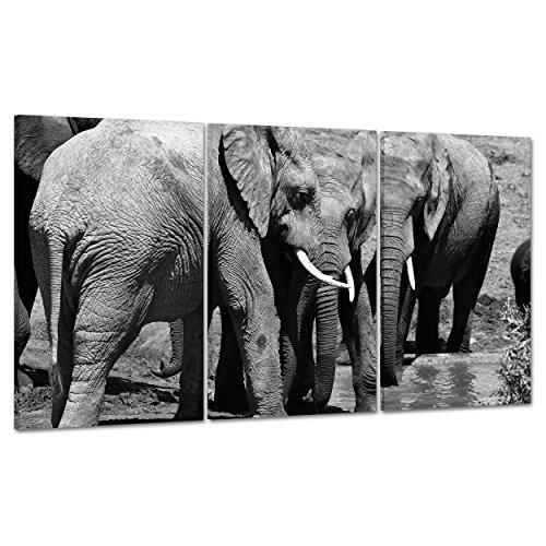 Cuadro sobre lienzo Canvas–ConKrea–Listo para colgar–Elefantes–Sabana Africana