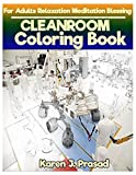 CLEAN Room Coloring book for Adults Relaxation  Meditation Blessing: Sketches Coloring Book Grayscale Images