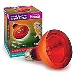 Arcadia Reflektorlampe 100 Watt E27 Reptilien Wärmelampe rot Terrarium Vivarium Infrarot