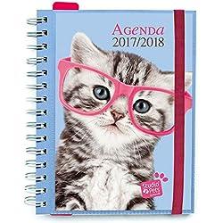 Grupo Erik Editores - Agenda escolar 2017/2018 Semana Vista Studio Pets Cat