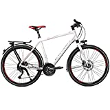 Univega Herren Geo 4.0 Fahrrad, White, 60