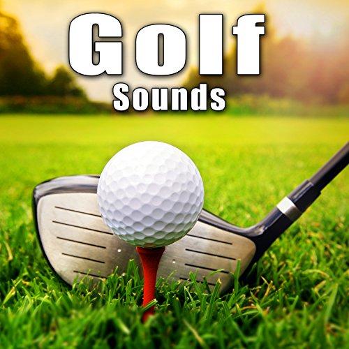 9 Wood Golf Club Makes a Single Hit off Fairway