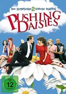 Pushing Daisies - Die komplette zweite Staffel (4 DVDs)
