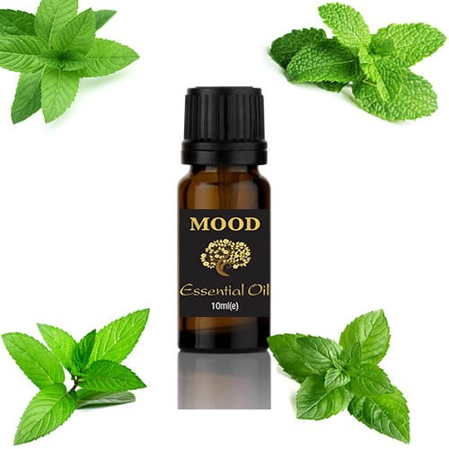 Peppermint-10ml-Premium-Essential-Oil-100-Pure-Natural-FREE-UK-PP