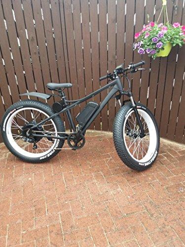 1500w 48v High Speed Electric Fat Tyre Bike